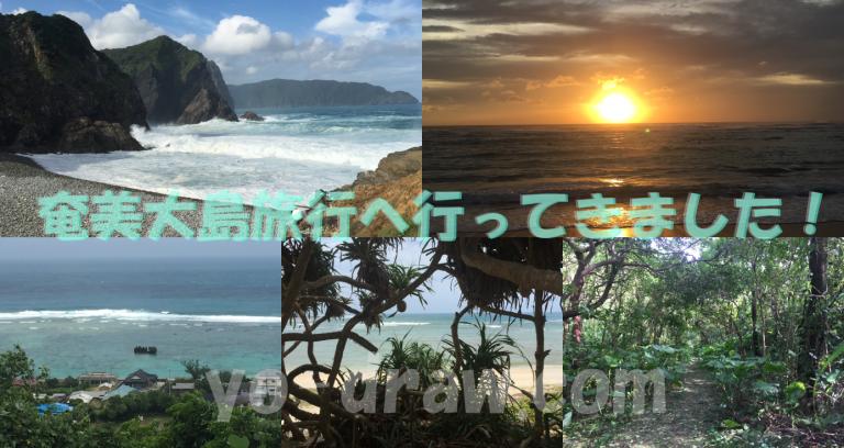 奄美大島旅行へ行ってきました!|家族・カップルにおすすめの観光スポット