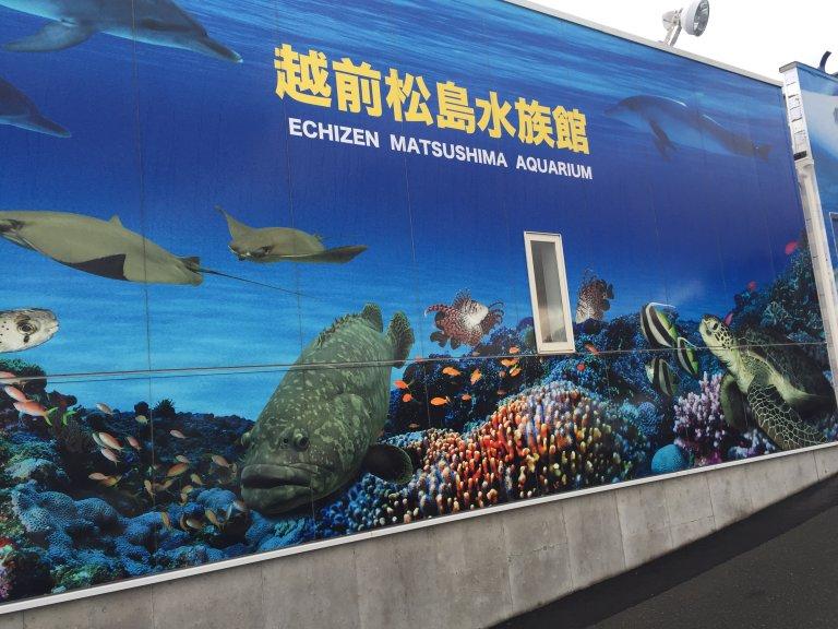 越前松島水族館の料金・割引・口コミ・感想・見どころ・所要・滞在時間・周辺観光スポット