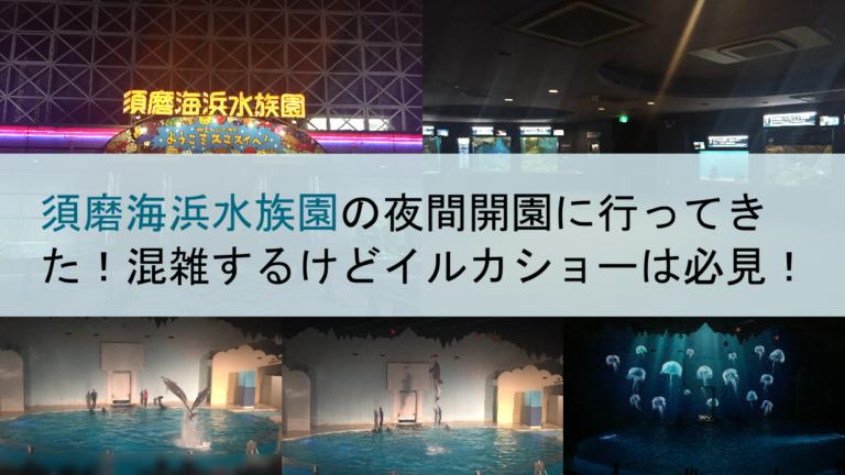 須磨海浜水族園の夜間開園に行ってきた!混雑するけどイルカショーは必見!